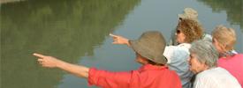 Sundarban-boat-trip-960x446 copy