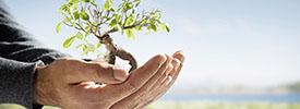 environmental consulting serbia
