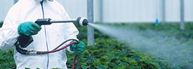 pesticide-300_tcm18-60750